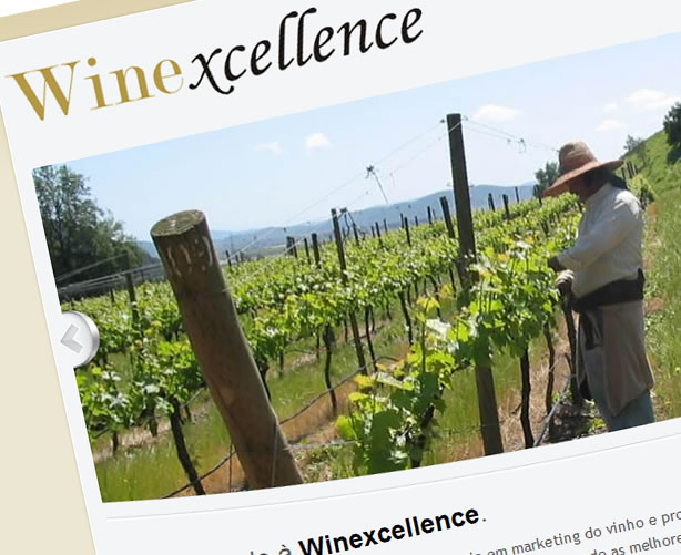 www.winexcellence.com.br